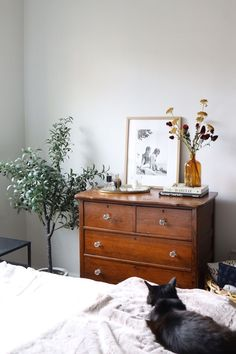 How To Decorate Your Apartment For Fall Under - so dekorieren sie ihre wohnung für den herbst - - comment décorer votre appartement pour tomber sous Decor Room, Bedroom Decor, Ikea Bedroom, Wall Decor, Modern Bedroom, Master Bedroom, Autumn Decor Bedroom, Bedroom Wall, Pub Decor