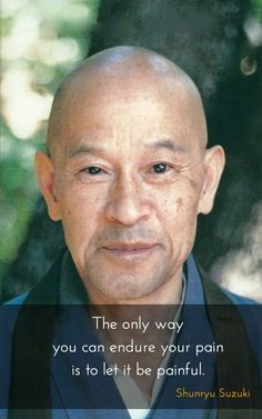 """Let it be painful ~  Shunryu Suzuki http://justdharma.com/s/lgvmb  The only way you can endure your pain is to let it be painful.  – Shunryu Suzuki  from the book """"Crooked Cucumber: The Life and Zen Teaching of Shunryu Suzuki"""" ISBN: 978-0767901055  -  https://www.amazon.com/Crooked-Cucumber-Teaching-Shunryu-Suzuki/dp/0767901053/163-0912246-3240146?ie=UTF8&camp=1789&creative=9325&creativeASIN=0767901053&linkCode=as2&redirect=true&ref_=as_li_tf_tl&tag=jusdhaquo-20"""