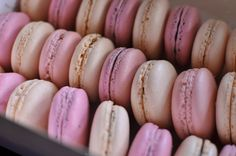 French macaroons.