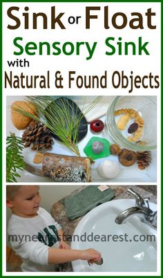 Sink or Float experiment with found objects and objects from nature. Perfect for toddlers or preschoolers.