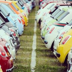 That's what we call a #paradise. #Fiat500
