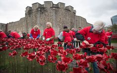 """Paul Cummins, the artist who created the Tower of London poppies, says he is """"overwhelmed""""   by the Chancellor waiving VAT on ceramic flowers sales for charity"""