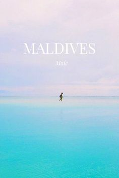 Stunning photos from the beach in the Maldives. Story created on the Steller app by Male Maldives, Maldives Travel, Summer Travel, Beach Photos, Dream Vacations, Travel Pictures, Places To Travel, Adventure Travel, Travel Inspiration