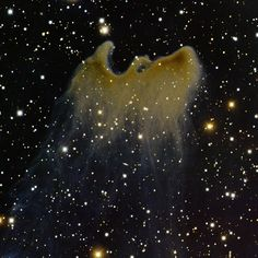 This is the Ghost Nebula, a reflection nebula in the Cepheus constellation. It is located about 1500 light years away from Earth.    Photo credit: T.A. Rector/University of Alaska Anchorage, H. Schweiker/WIYN and NOAO/AURA/NSF