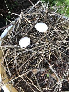 静岡市葵区北安東で、 美と健康を楽しむ 若かえり専門の美容室 髪森の石井です。  こんにちは。  今日もいい天気です。   こんな日は、 いい事が思いつきます。   その1つが  今度新たなメニュー  「よもぎ蒸... 詳しくは http://kamimori917.com/72683/?p=5&fwType=pin