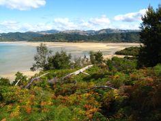 Nueva Zelanda | Inso