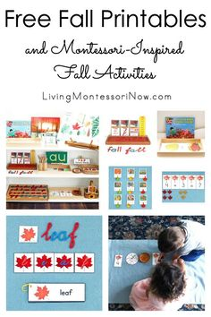 These free fall printables and Montessori-inspired fall activities are designed for preschoolers through first grade. Perfect for home or classroom - Living Montessori Now Autumn Activities For Kids, Fall Preschool, Preschool At Home, Division Activities, Montessori Activities, Preschool Activities, Preschool Printables, Free Printables, Leaf Printables