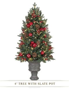 Norway Spruce Decorated Potted Tree