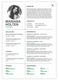 Cv Resume Sample, Job Resume Template, Graphic Design Resume, Cv Design, It Cv, Curriculum Vitae Template, Creative Cv, Cv Examples, Job Search