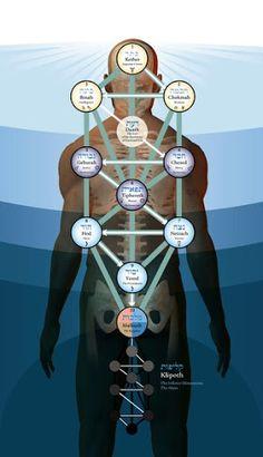 Resultado de imagen para tree of life ray manifestation
