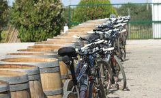 The Alentejo wine countryside as your tour mate. Surf Trip, Portugal Travel, Countryside, Vineyard, Surfing, Tours, Adventure, Landscape, 10 Days