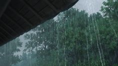 Discover & share this Animated GIF with everyone you know. GIPHY is how you search, share, discover, and create GIFs. Rain Animation, Falling Gif, Rain Gif, Casa Anime, The Garden Of Words, Smell Of Rain, Anime Gifs, Bad Boy, Les Gifs