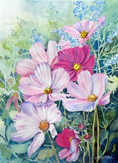Cosmos II  Sue Lynn Cotton