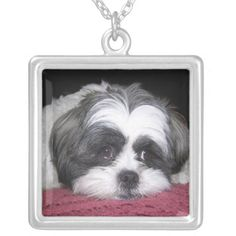 Belle The Shih Tzu Dog Custom Jewelry. A Shih Tzu Dog Breed Photograph. See them all here: http://www.zazzle.com/ironydesignphotos/necklaces?rf=238222968750191371tc=pinterest