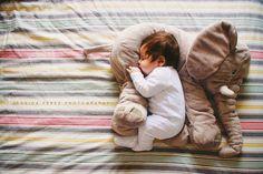 Peluş Fil ile uyuyan bebek
