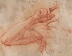 Attributed to Jacopo da Pontormo | Right Arm of a Man, Raised to his Ear | The Morgan Library & Museum