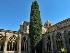 El Monasterio de La Oliva se situa en medio de una explanada muy cerca de la localidad de Carcastillo, de la que es importante monumento, a orillas del río Aragón al norte de las Bardenas Reales, de las cuales es congozante.