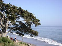 Santa Barbara, CA #SantaBarbaraBeach #SantaBarbara #California #USA