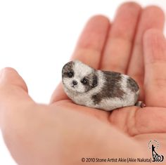 Japanese Artist Turns Stones Into Cute Animals You Can Hold In The Palm Of Your Hand - I Can Has Cheezburger? Pebble Painting, Pebble Art, Stone Painting, Painted Rock Animals, Painted Rocks Kids, Painted Pebbles, Rock Painting Patterns, Rock Painting Designs, Hand Pictures