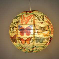 BlueQ History Of The Butterfly Paper Lantern