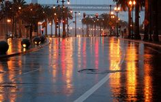 a walk after the rain