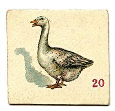 animalcardgoosegfairy002a.jpg (850×816)
