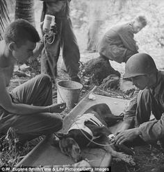American G.I.s treating wounded dog during WWII action on Orote Pennisula