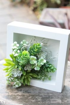 Amazing Succulent Wall Art To Be Hang on The Wall Succulent wall art Succulents garden Succulents Succulent wall Succulent wall planter Succulent display 21 Amazing Succ. Succulent Outdoor, Succulent Wall Planter, Succulent Frame, Succulent Display, Succulent Landscaping, Succulent Gardening, Succulent Arrangements, Succulent Wall Gardens, Succulent Plants
