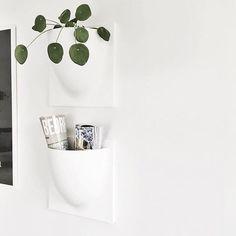via @vertiplants on Instagram Deco Design, Home Accessories, Wall Decor, Instagram Posts, Inspiration, Minimalist, Home Decor, Plants, Patio