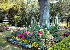 Charleston garden..