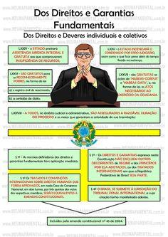 Artigo 5º em mapas mentais Mental Map, Law And Order, Public Service, Study Notes, English Words, Student Life, Law School, Science And Nature, Crime