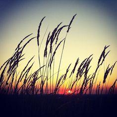 .@heimatpottential | Der Herbst r wie reduziert die Sonnenstunden. Tja. Machste nix. #abcfee