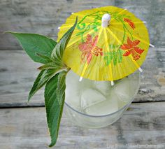 Pineapple Sage Sipper from Fresh Eggs Daily Non Alcoholic Drinks, Cocktail Drinks, Cocktail Recipes, Drink Recipes, Tim Tim, Pineapple Sage, Refreshing Summer Cocktails, Hobby Farms, Yummy Drinks