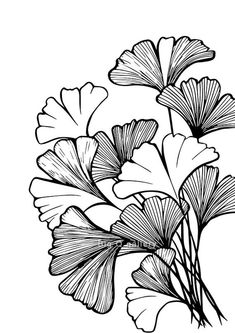 Vintage Illustration Art, Illustration Art Drawing, Digital Illustration, Black And White Drawing, Black And White Illustration, Black And White Design, White On Black Art, Black Pen Drawing, Black And White Leaves