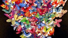 Come creare delle bellissime farfalle magnetiche