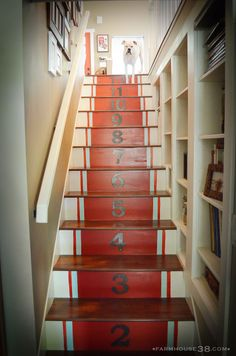 Love the risers but love the built ins created in the stairway even more!