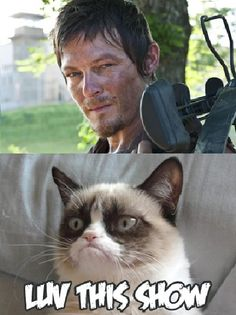 Of course Grumpy Cat loves The Walking Dead!