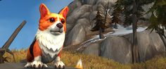 World of Warcraft celebrates 12th birthday with free corgi puppies | PC Gamer