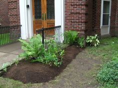 Did a little transplanting into the new entrance bed this morning - break in the rain - this is going to be gorgeous and welcoming!