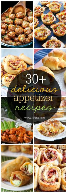 30+ Appetizer Recipe