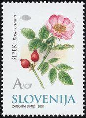◇Slovenia 2002