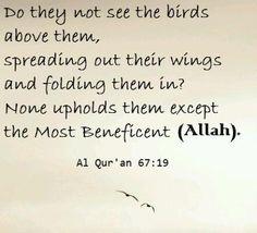 Ramadan picture quotes11