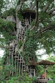 real tree village - Google Search