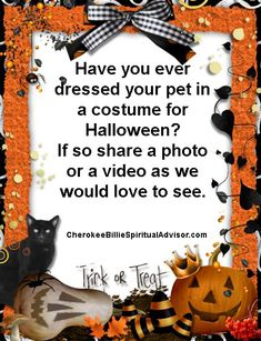 Have you ever dressed your pet in a costume for Halloween Halloween Trick Or Treat, Halloween Boo, Halloween Costumes, Norse Goddess, Halloween Traditions, Celtic Culture, Different Holidays, Animal Totems, Have You Ever