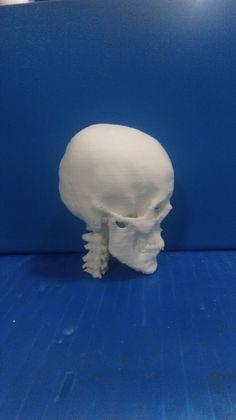 3D printed human skull #3dprinting #3dprinted #3dprint #3dprinted #skull #medical