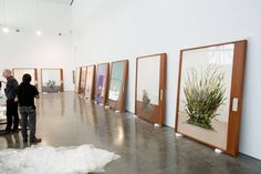 """Works by Taryn Simon as her new exhibition """"Paperwork and the Will of Capital"""" was..."""