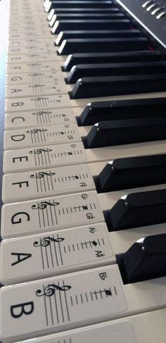 Este conjunto de etiquetas engomadas de la etiqueta es para un teclado o piano clave 61, las etiquetas son en orden listo para colocarse en las llaves c medio destacado para la referencia fácil. Las etiquetas se quitan fácilmente si es necesario. Cada etiqueta es de 20mm de ancho x 48mm largo sobre un papel blanco, brillo opaco. Las etiquetas le ayudará a cualquiera que quiera aprender piano, con la letra de la clave y nota en la barra de ayuda y ayudar a acelerar el proceso de aprendi...