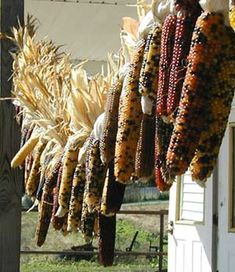 Wow,this is absolutely gorgeous.So do love Indian corn!!!