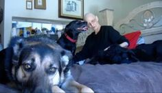 Weeks to live: Dying woman wants loving home for pets or the... - Care2 News Network