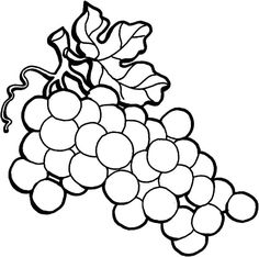 image result for grapes coloring page - Grapes Coloring Page